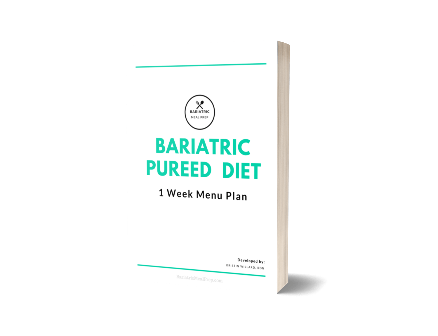 Bariatric Meal Plan pdf